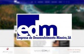 CRIAÇÃO WEBSITE EDM