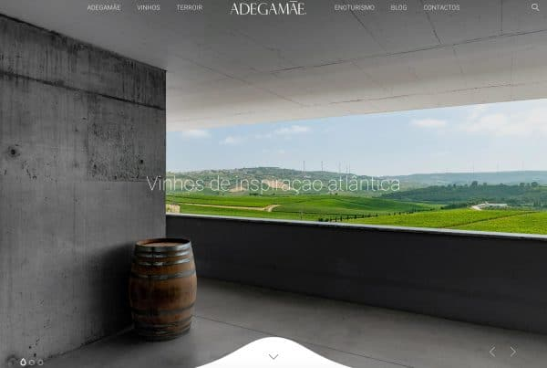 Website Adegamãe