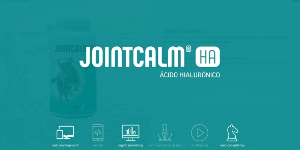 JOINTCALM